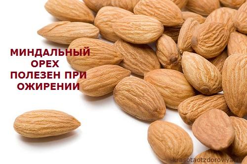 Польза миндальных орехов