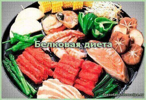белковая-диета
