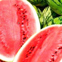 польза и вред арбуза