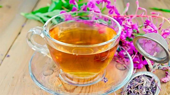 Иван чай свойства