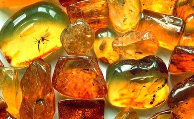 Свойства камней янтаря